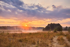 Misty summer sunrise. Foggy river in the morning. Misty morning Stock Photos