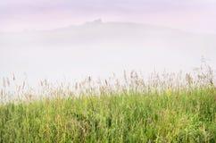 Misty Summer Sunrise nas montanhas: Grama alta, névoa grossa sobre uma montanha, árvores e nuvens roxas dramáticas no fundo novo foto de stock