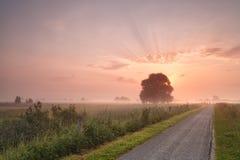 Misty summer sunrise over bike road Stock Photography