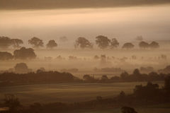 Misty sunrise. Northumberland misty sunrise into the sun royalty free stock photo