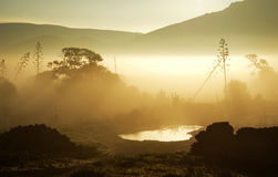 Misty sunrise. In south Europe. Cabo de Gata Nat. Park Royalty Free Stock Images