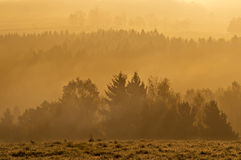 Misty Sunrise Royalty Free Stock Photography