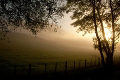 Misty sunrise Royalty Free Stock Image