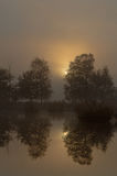 Misty sunrise above a lake Stock Photography