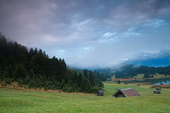 Misty sunrise on alpine meadows Stock Photography