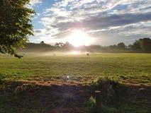 Misty Sunrise au-dessus de parc de Stanmer Image stock