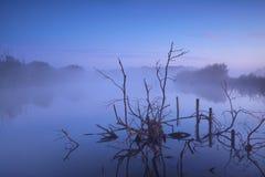Misty sunrise on bog. Drenthe, Netherlands royalty free stock images