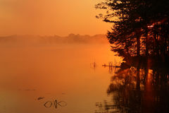 Misty Sunrise at Locust Lake State Park Stock Photography