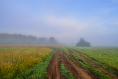 The misty sunrise at a meadow in Central Russia. The clear sky and a dirt road can also be seen Royalty Free Stock Photo