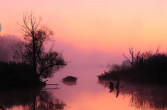 Misty sunrise (Mood). Misty mood. Sunrise over the Danube (Germany royalty free stock photography