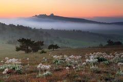 Misty sunrise in the mountain Stock Photo