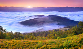Misty sunrise in the mountains Stock Images