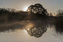 Misty sunrise at the Ornamental Pond stock photo
