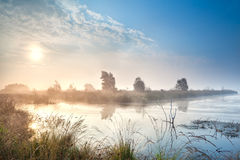 Misty sunrise over bog Royalty Free Stock Photos