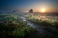 Misty sunrise over countryside path Stock Images