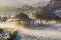 Misty sunrise over the Devonshire fields with trees in view, Brentor , Devon , UK Royalty Free Stock Photo