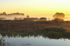 Misty sunrise Stock Photos