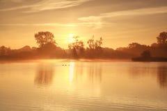 Misty sunrise over lake Royalty Free Stock Image