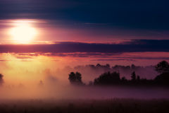 Misty sunrise over meadow2 Stock Images