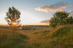 Misty sunrise over a river and a field of grass with path on it Royalty Free Stock Image