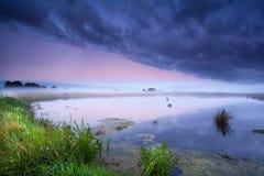 Misty sunrise over wild lake Royalty Free Stock Images