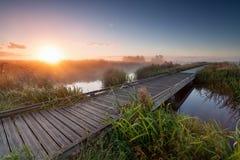 Misty sunrise over wooden path on lake Royalty Free Stock Image