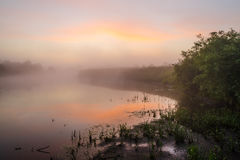 The misty sunrise at the river Royalty Free Stock Photography