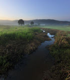 Misty sunrise with small stream Royalty Free Stock Images