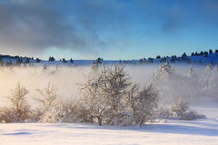 Misty sunrise in winter Royalty Free Stock Images