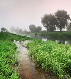 Misty sunset on the river Stock Photography