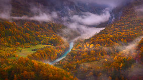 Misty Tara river gorge in late autumn atmosphere Royalty Free Stock Images