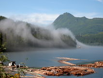 Misty Tug. Mist enveloping a working tug boat at Telegraph Cove, Vancouver Island, Canada Royalty Free Stock Photography
