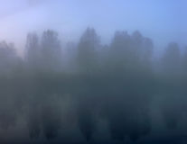 Misty unclear dawn at the autumn lake Royalty Free Stock Photo