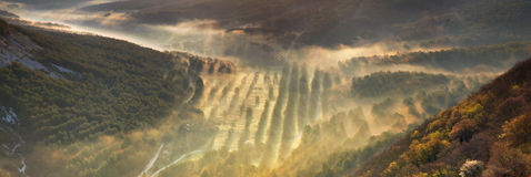 Misty valley Royalty Free Stock Photos