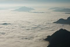 Misty valley in the morning Stock Photography
