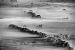 Misty valley Stock Photos