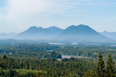 Misty Valley in Tofino - BC, Canada stock fotografie