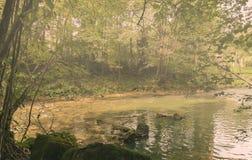 Misty Venoge-rivier Royalty-vrije Stock Foto