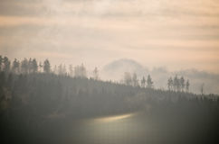 Misty view during the sunset in hills Royalty Free Stock Photography