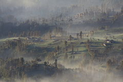 Misty village of cemoro lawang , Bromo Indonesia Stock Photo