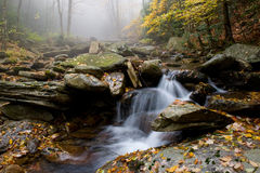 Misty Water Stock Photography