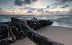 Misty waves sunrise Royalty Free Stock Image