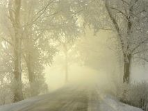 misty winter coutry road at sunrise Stock Photos