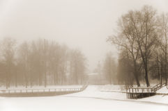 Misty winter landscape Stock Photography