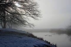 Misty Winter-Morgen über einem See Lizenzfreie Stockfotos