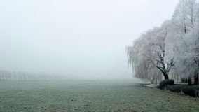Misty Winter morning Stock Image