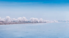 Misty winter scene of frozen pond in the city park. Stock Image