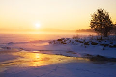 Misty winter sunrise over a frozen lake Royalty Free Stock Photo