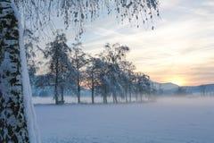Misty Winter Sunset Fotografering för Bildbyråer