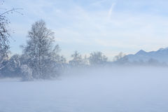 Misty Winter Sunset II Stock Photography